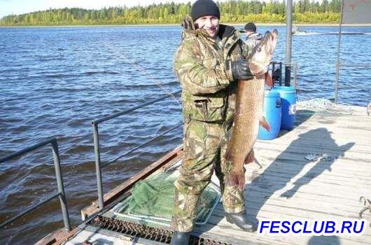 Все о рыбалке - тоже щучка.jpeg
