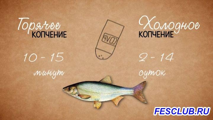 Все о рыбалке - копчение.jpg