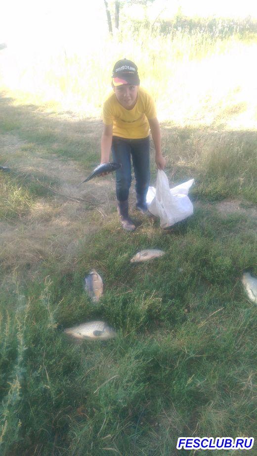 Все о рыбалке - IMAG3944.jpg
