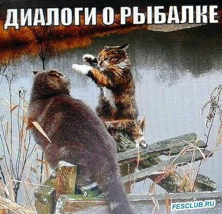 Все о рыбалке - ДИАЛОГИ.jpg
