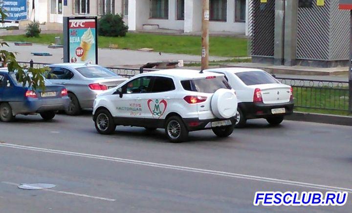Наши встречи на дорогах. ФОТО-ОХОТА  - IMG_20170717_182858.jpg