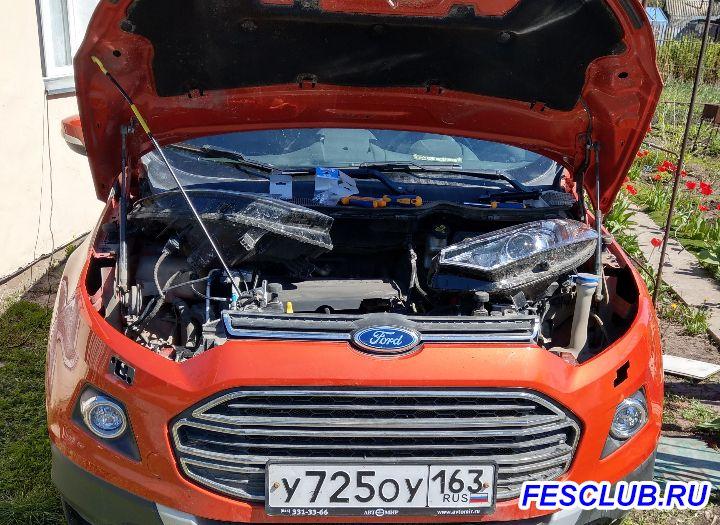 Отзывы, первые впечатления от Ford Ecosport 1.6 MT - IMAG1345.jpg