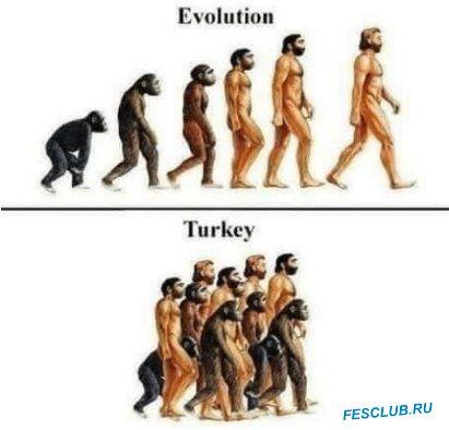 Турция - turki.jpeg
