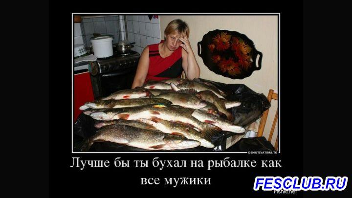 Все о рыбалке - Screenshot_2018-08-06-21-35-38.jpg